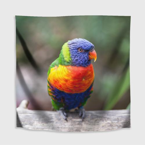 Скатерть 3D  Фото 02, Попугай