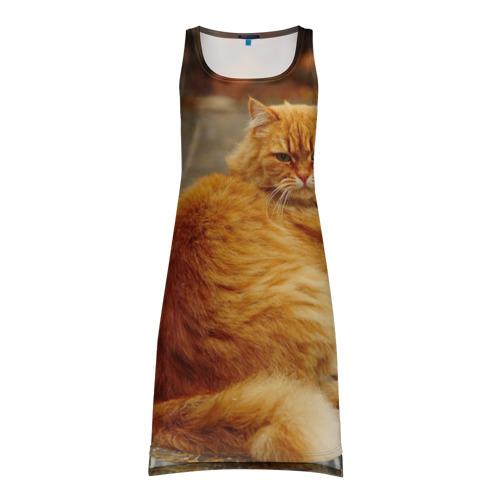 Платье-майка 3D Рыжий кот
