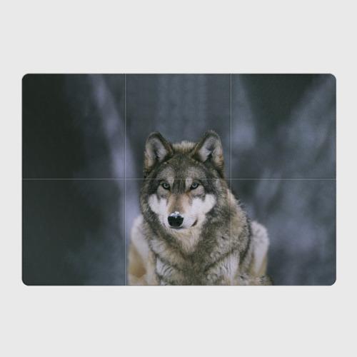 Магнитный плакат 3Х2 Волк
