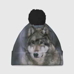 Волк в лесу