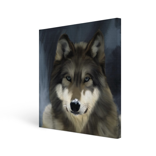 Холст квадратный  Фото 01, Картина волк
