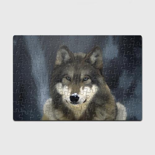 Пазл магнитный 126 элементов Картина волк Фото 01