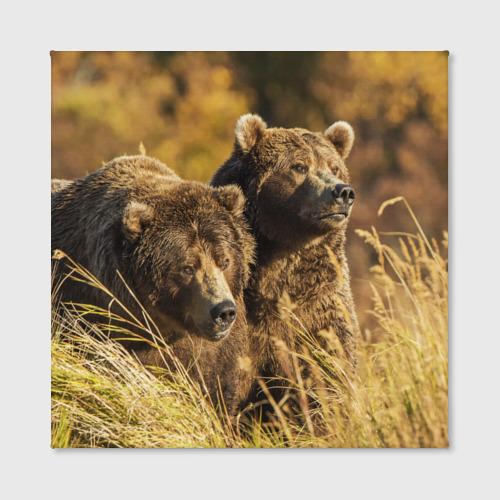 Холст квадратный  Фото 02, Медведи