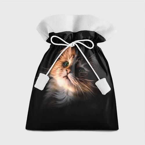 Подарочный 3D мешок Зеленоглазый котёнок