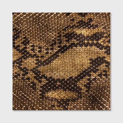 Холст квадратный  Фото 02, Змеиная кожа