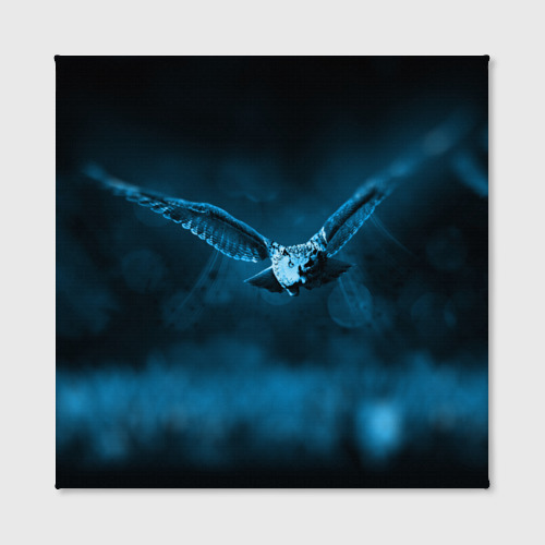 Холст квадратный  Фото 02, сова