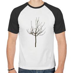 Веточка дерева