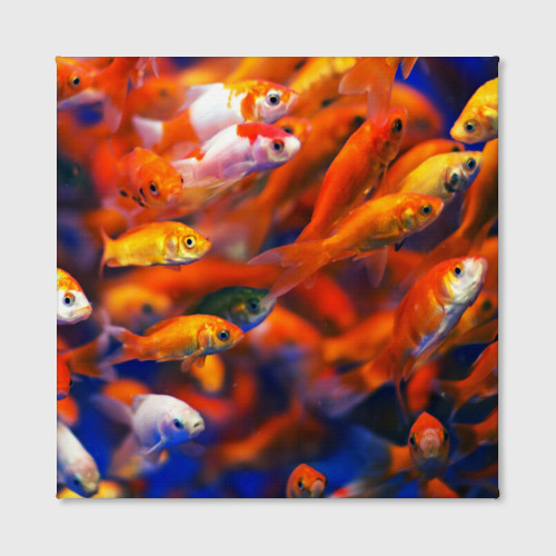 Холст квадратный  Фото 02, Рыбки