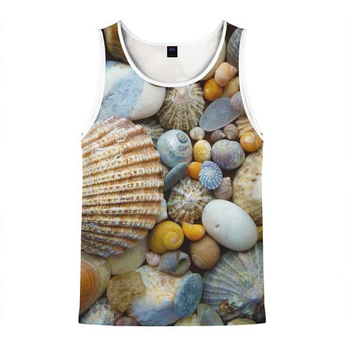 Морские ракушки и камни