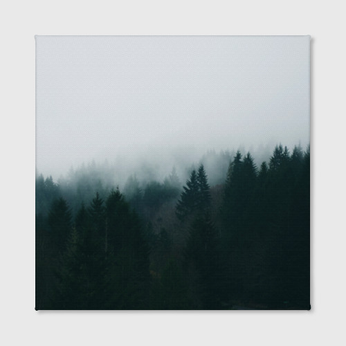 Холст квадратный Лес Фото 01
