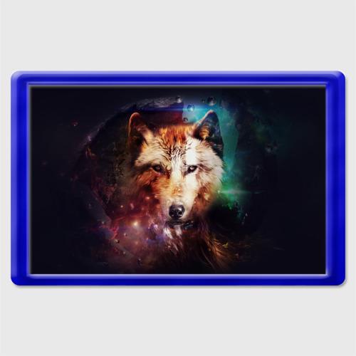 Магнит 45*70 Волк Фото 01