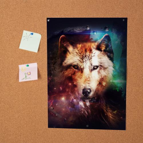 Постер Волк Фото 01