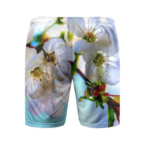 Мужские шорты 3D спортивные  Фото 02, Ветка вишни