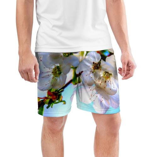 Мужские шорты 3D спортивные  Фото 03, Ветка вишни