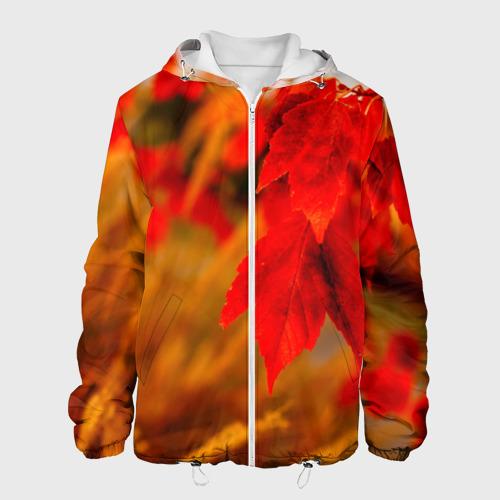Мужская куртка 3D  Фото 01, Осень