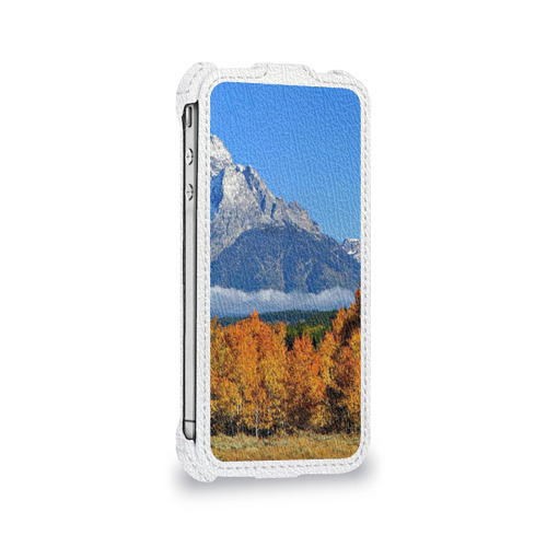 Чехол для Apple iPhone 4/4S flip  Фото 05, Орел