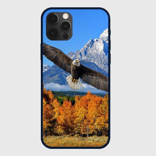 Чехол для iPhone 12 Pro Max Орел Фото 01