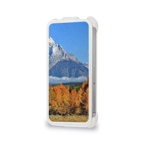 Чехол для Apple iPhone 4/4S flip  Фото 06, Орел