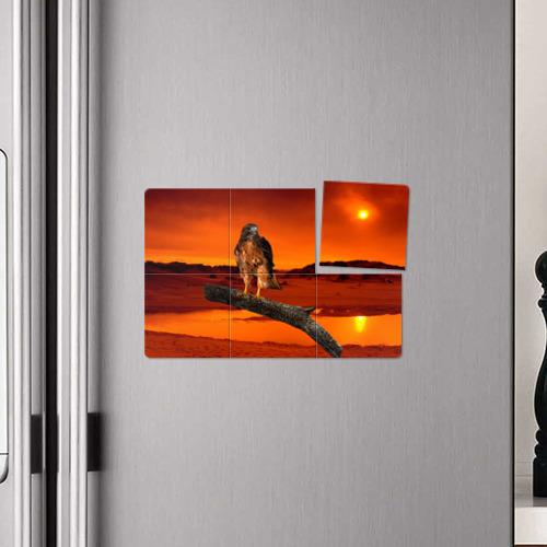 Магнитный плакат 3Х2 Орел Фото 01