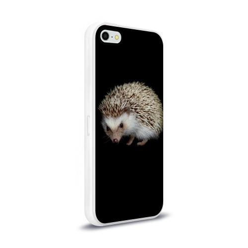 Чехол для Apple iPhone 5/5S силиконовый глянцевый  Фото 02, Ежик 2