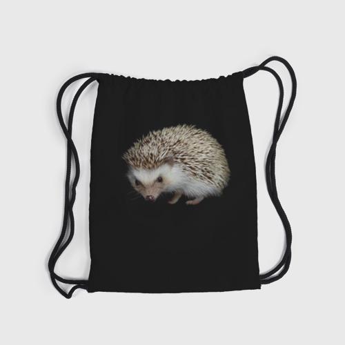 Ежик 2 (3d рюкзак-мешок) фото 3