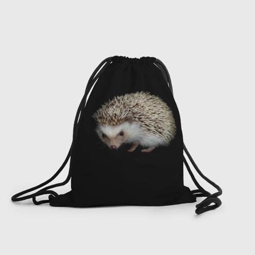 Ежик 2 (3d рюкзак-мешок) фото 0