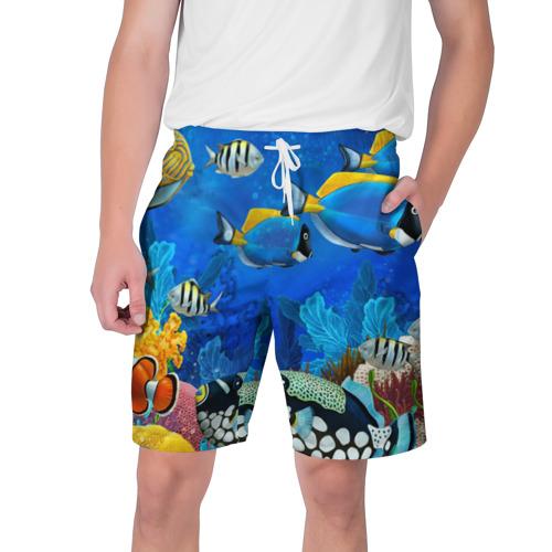 Мужские шорты 3D Экзотические рыбки