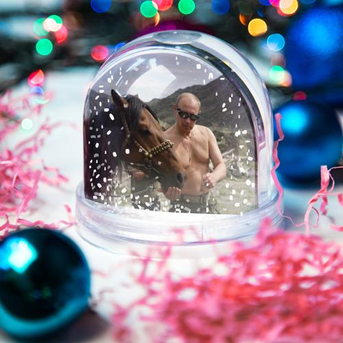Водяной шар со снегом  Фото 03, Путин с конем