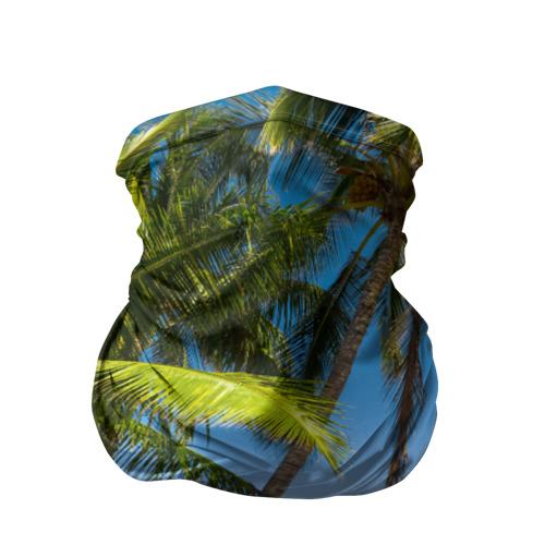 Бандана-труба 3D  Фото 01, Пальмы