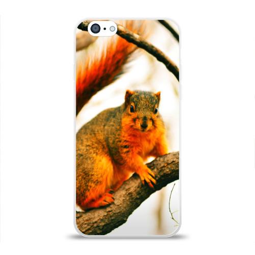 Чехол для Apple iPhone 6 силиконовый глянцевый  Фото 01, Белочка