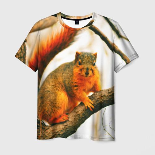 Мужская футболка 3D  Фото 03, Белочка