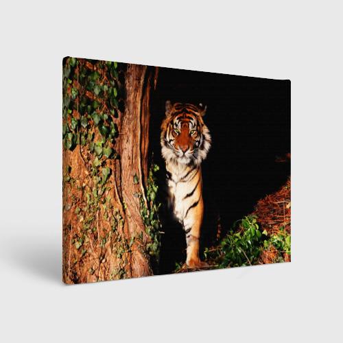 Холст прямоугольный  Фото 01, Тигр
