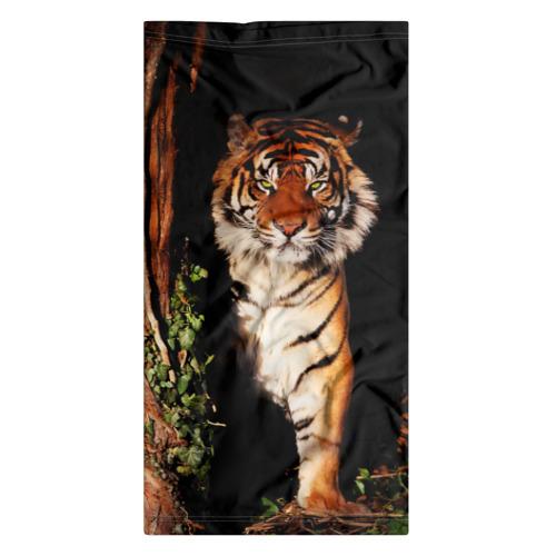 Бандана-труба 3D  Фото 07, Тигр