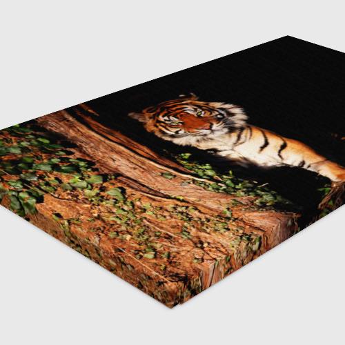 Холст прямоугольный  Фото 04, Тигр