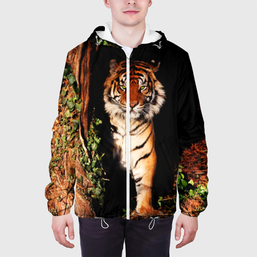 Мужская куртка 3D  Фото 04, Тигр