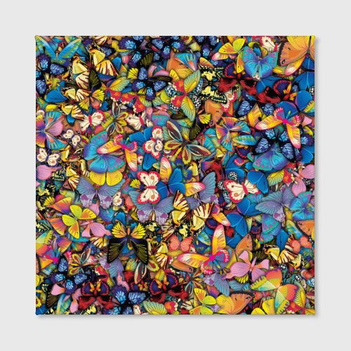 Холст квадратный Бабочки Фото 01