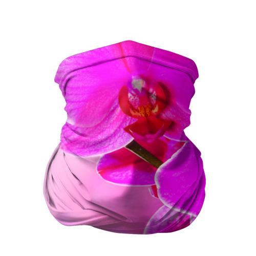 Бандана-труба 3D  Фото 01, Орхидея