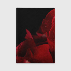 Лепестки розы