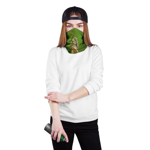 Бандана-труба 3D  Фото 02, Кузнечик