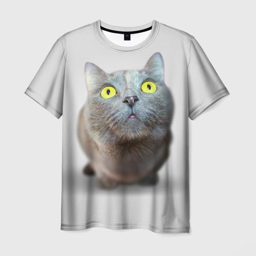 Мужская футболка 3D Удивлённый кот