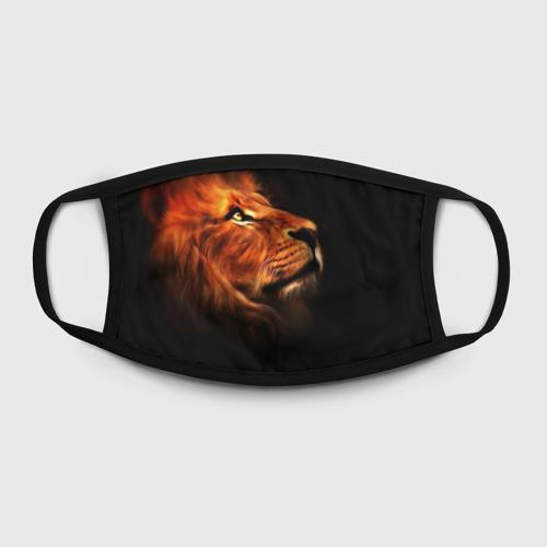 Маска защитная (+5 фильтров) Lion Фото 01