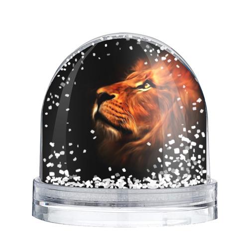 Водяной шар со снегом  Фото 02, Lion
