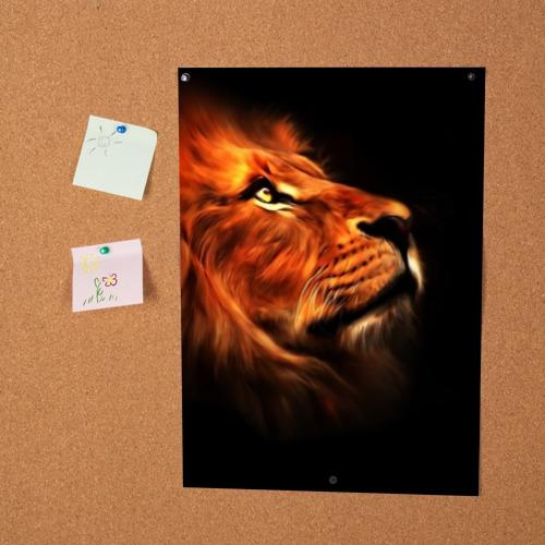 Постер Lion Фото 01