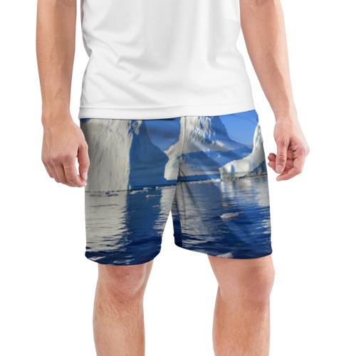 Мужские шорты 3D спортивные  Фото 03, Айсберг
