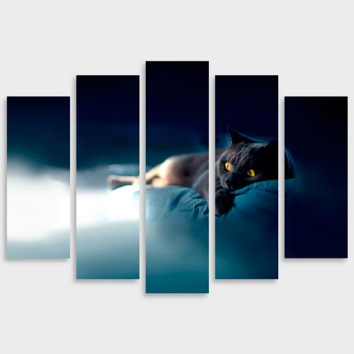 Модульная картина М20 Кошка