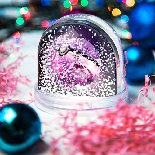 Водяной шар со снегом  Фото 04, Покемон 3