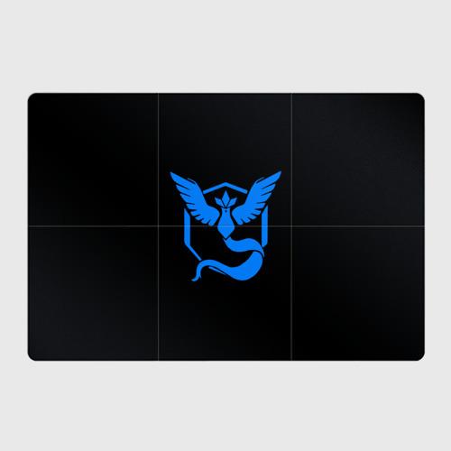 Pokemon Blue Team