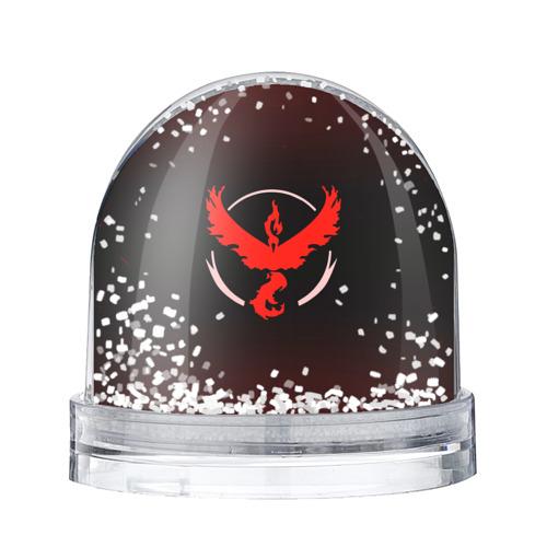Водяной шар со снегом  Фото 01, Pokemon Red Team