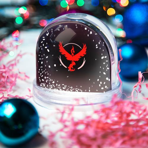Водяной шар со снегом  Фото 03, Pokemon Red Team