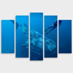 Модульная картина М20Китовая акула